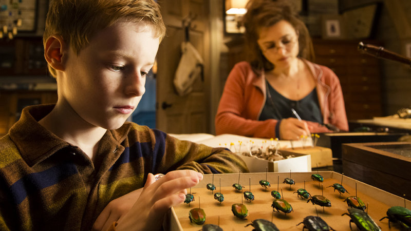 The Young and Prodigious T.S. Spivet 3D (image 11)