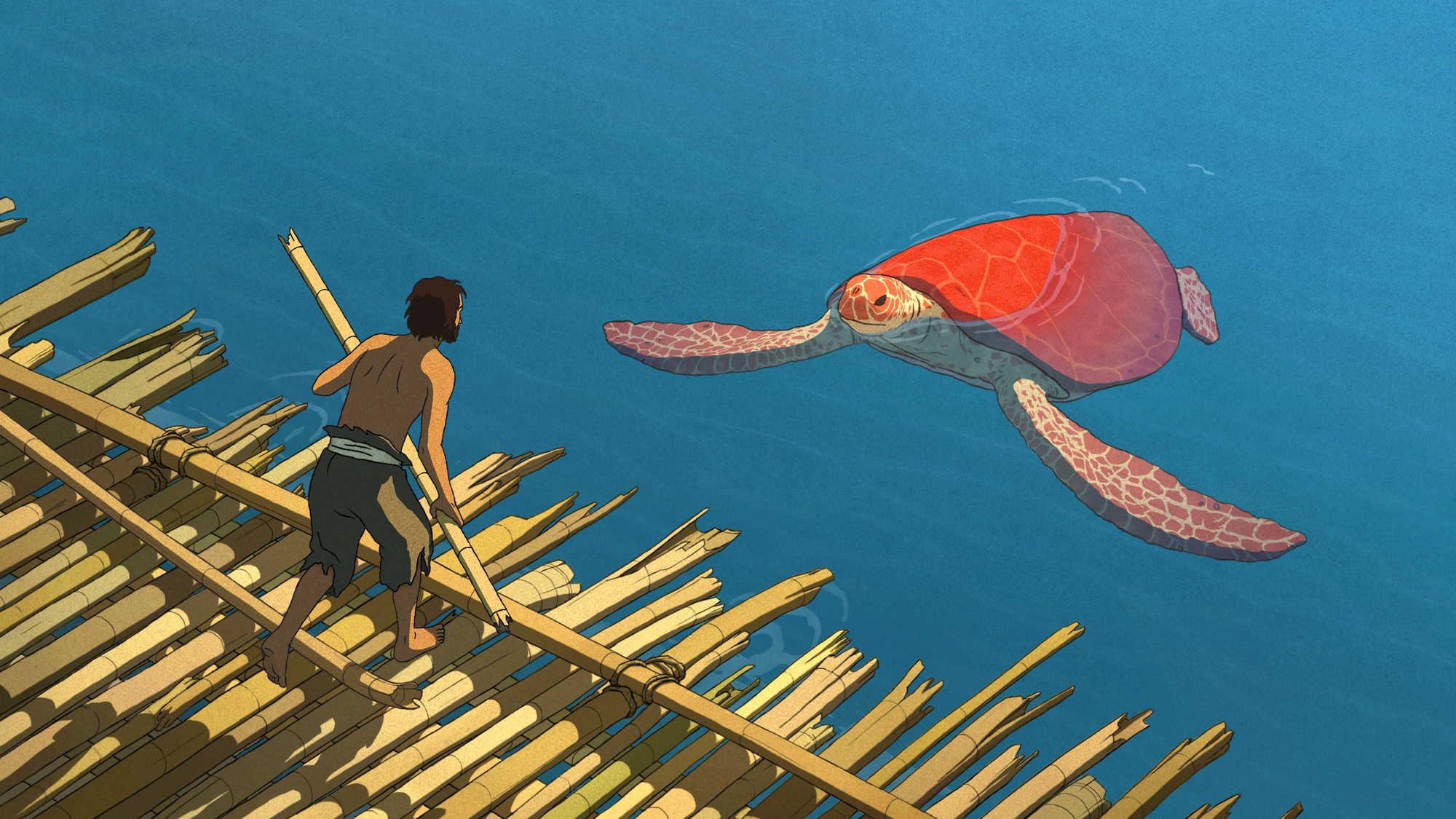 The Red Turtle (image 1)