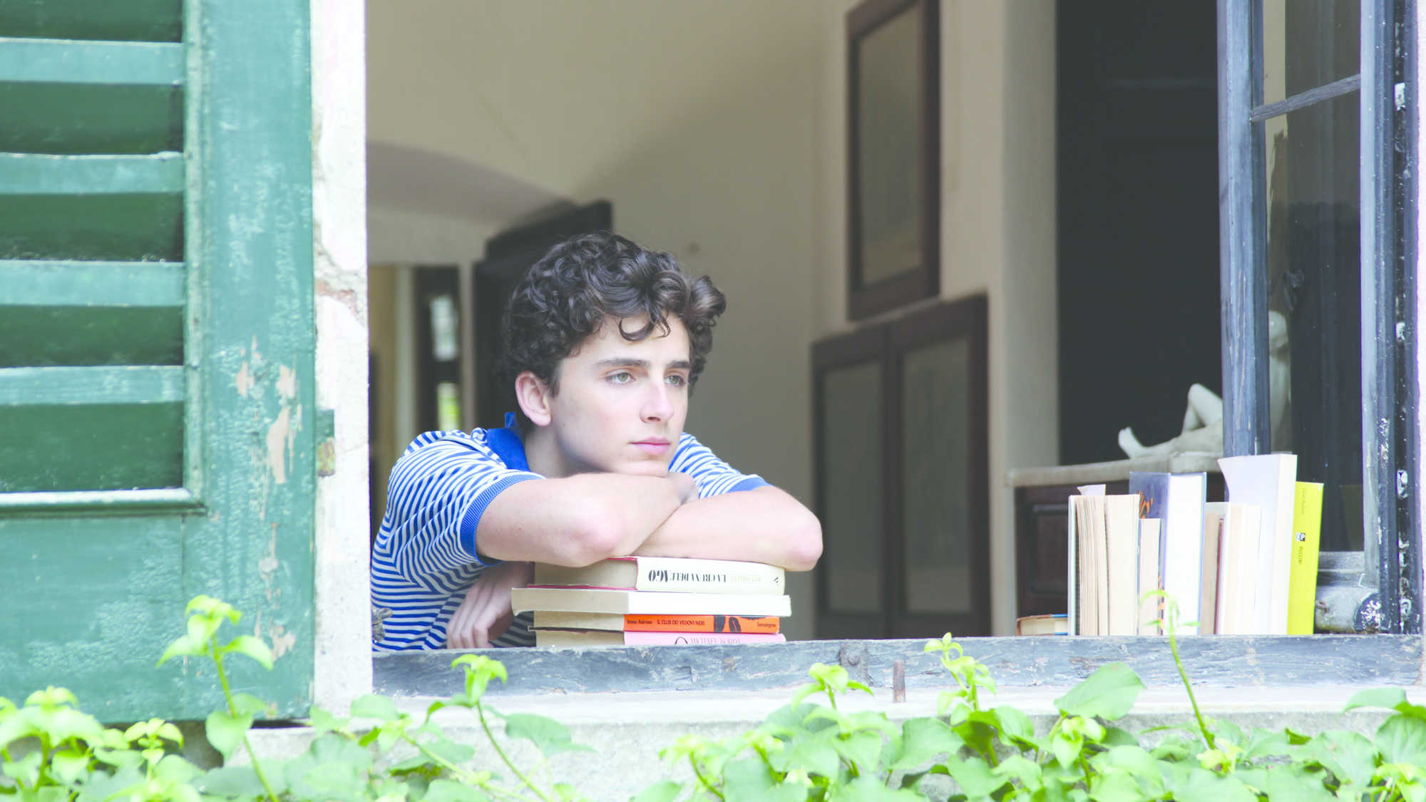 Call Me by Your Name (image 3)