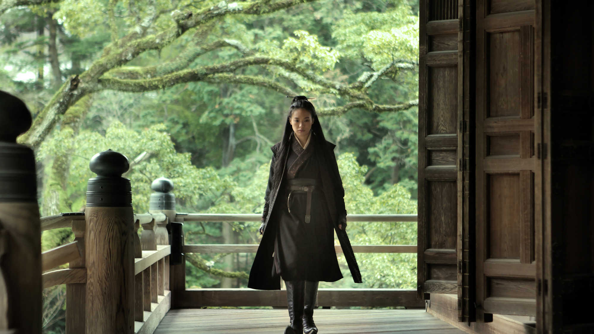 The Assassin (image 1)