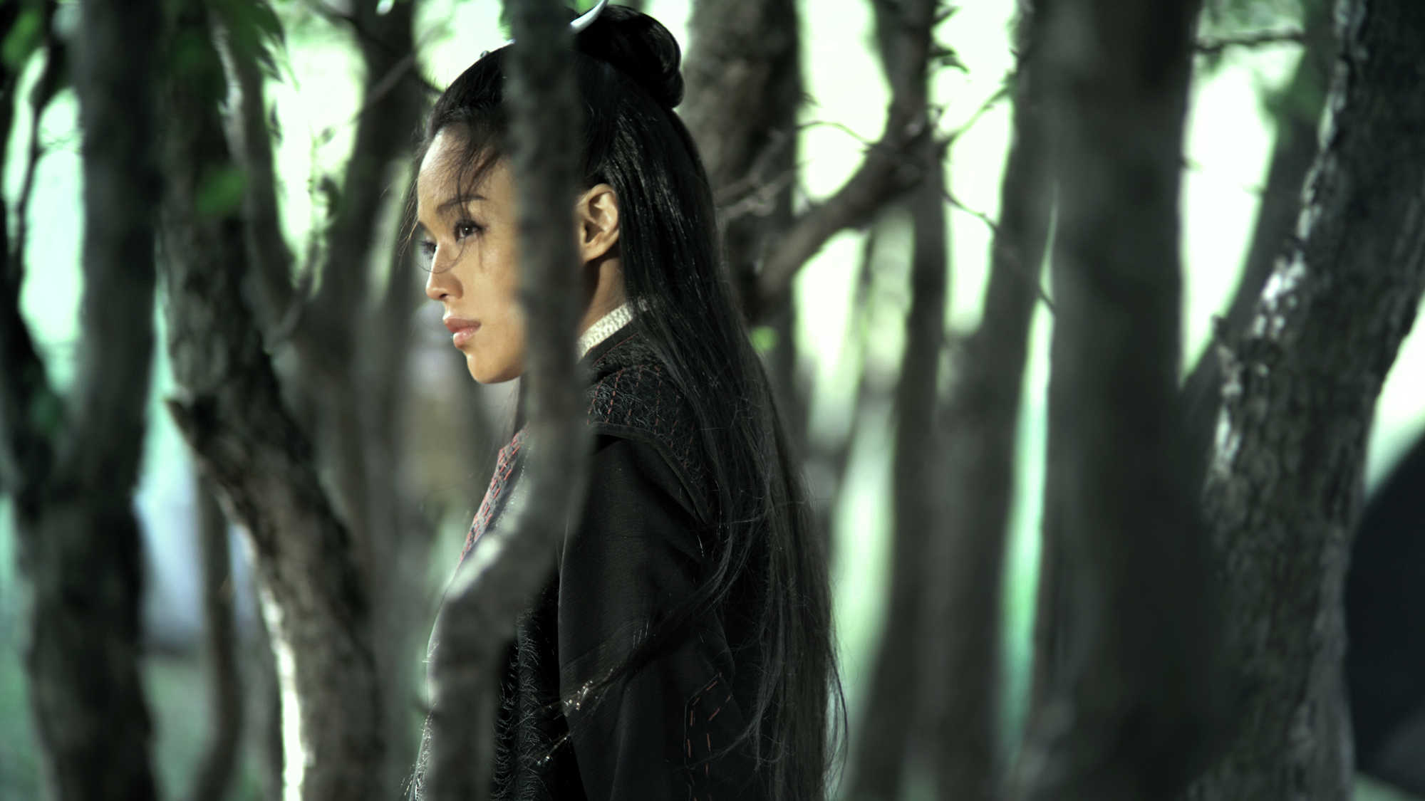 The Assassin (image 3)