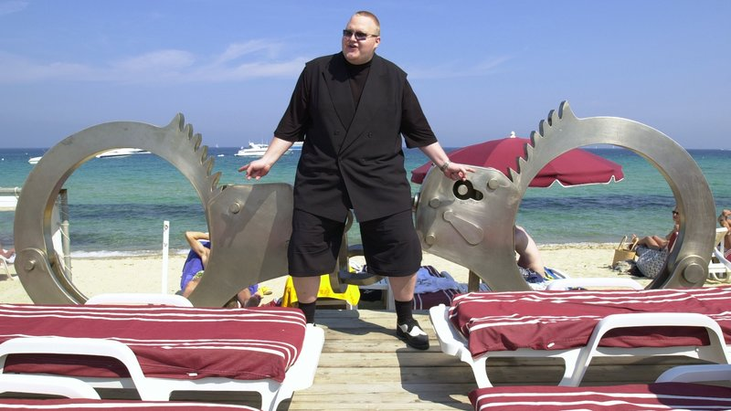 Kim Dotcom: Caught in the Web (image 2)