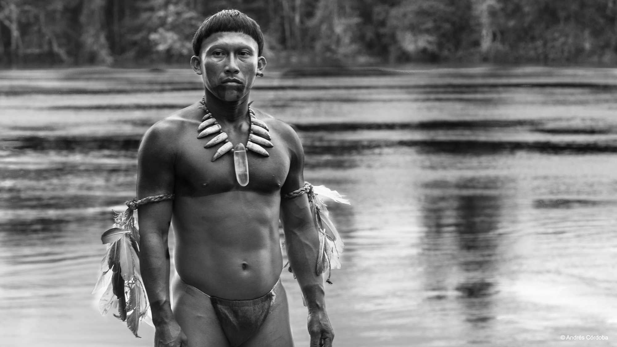 Embrace of the Serpent (image 1)