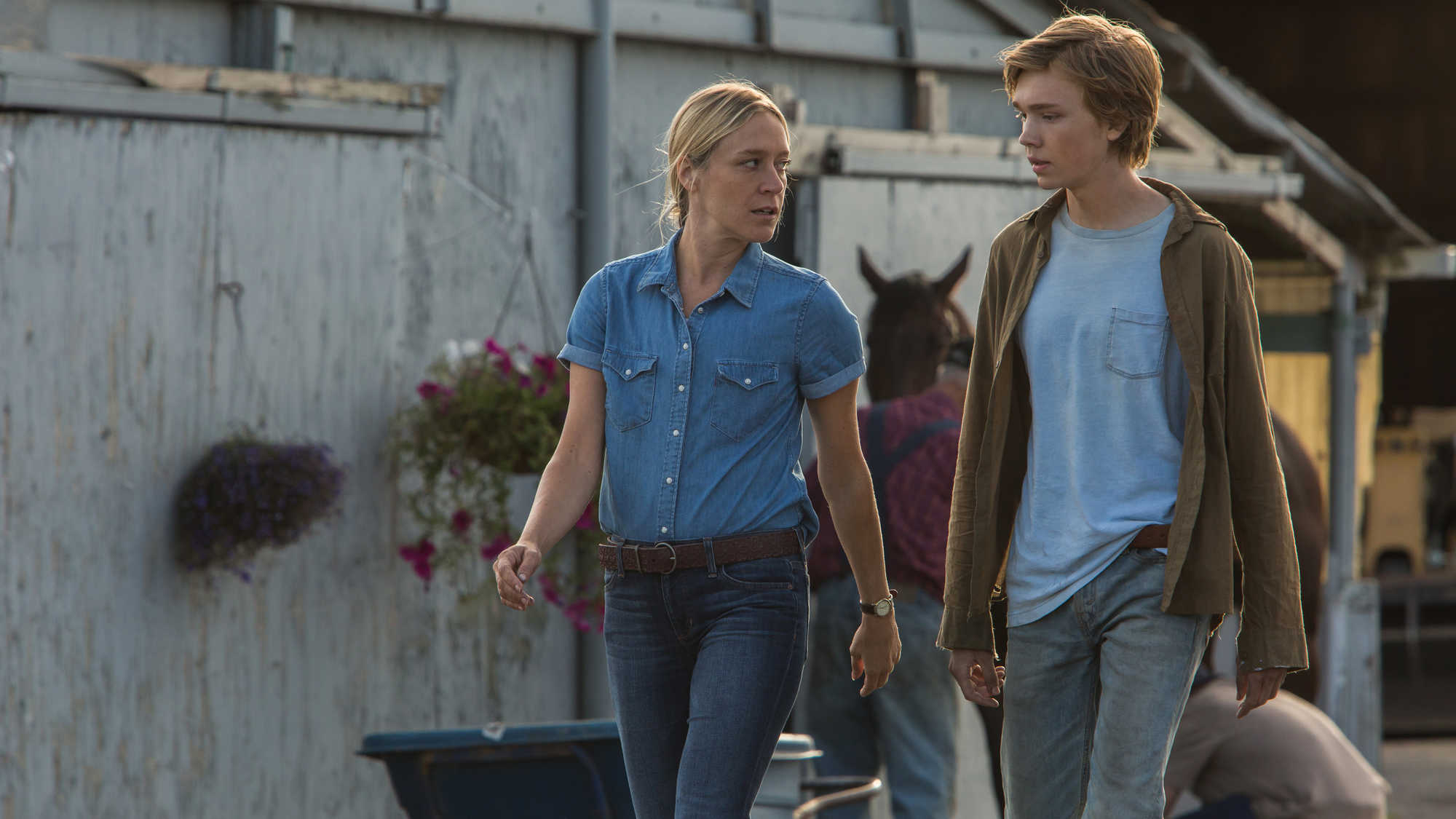 Lean on Pete (image 6)