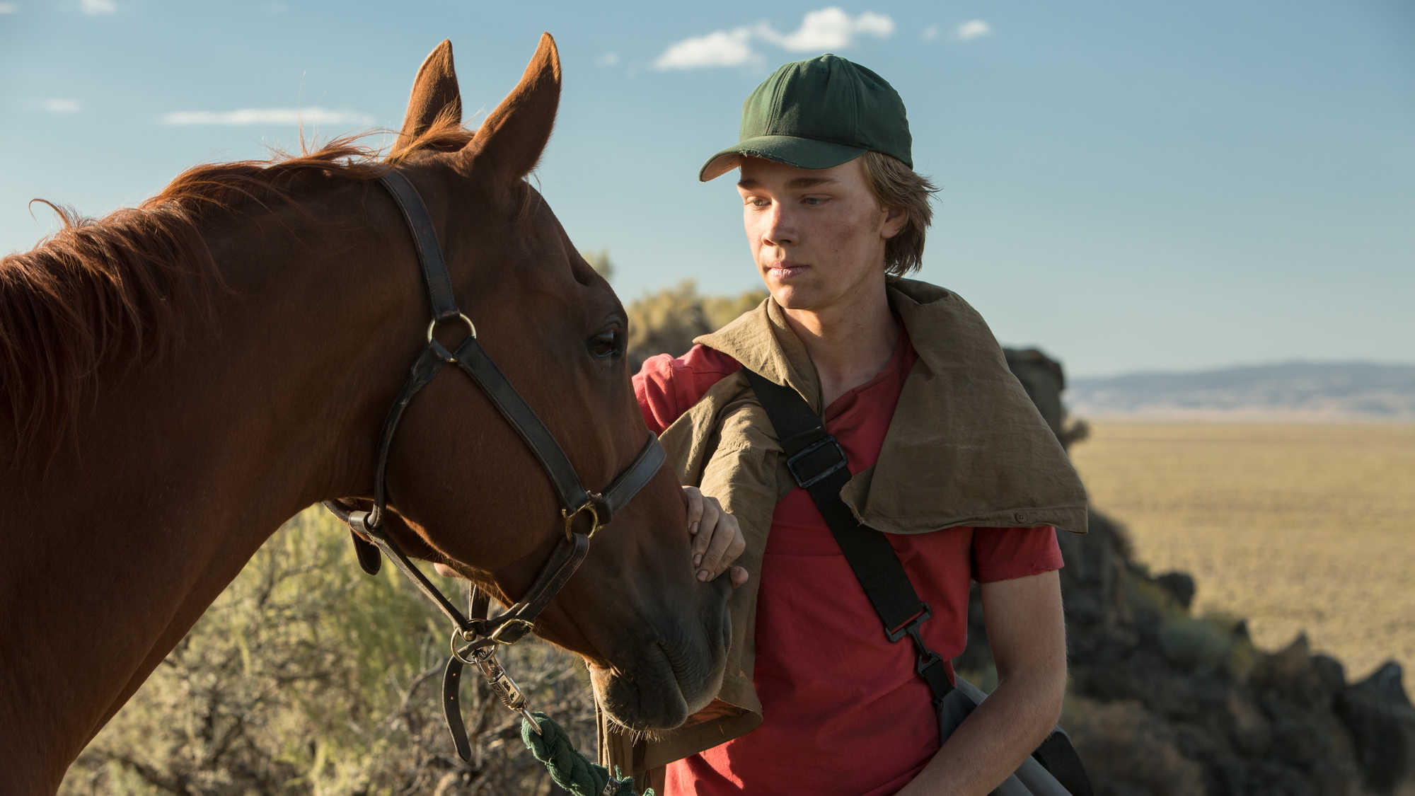 Lean on Pete (image 3)
