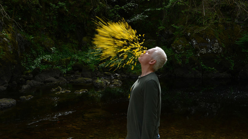 Leaning Into the Wind: Andy Goldsworthy (image 2)
